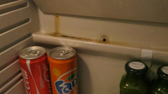 Meridiana Country Hotel: Mold and leaks in the refrigerator