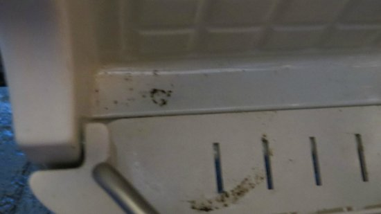 Meridiana Country Hotel: Mold in refrigerator