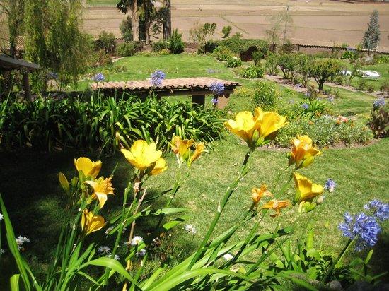 La Casa Del Conde : jardines y flores alrededor