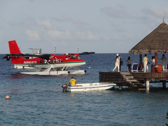 Vivanta by Taj Coral Reef Maldives: guest arriving by sea plane