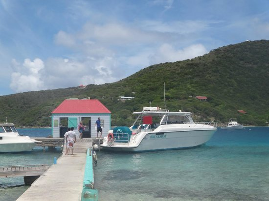 Pusser's Marina Cay Restaurant: The only access.