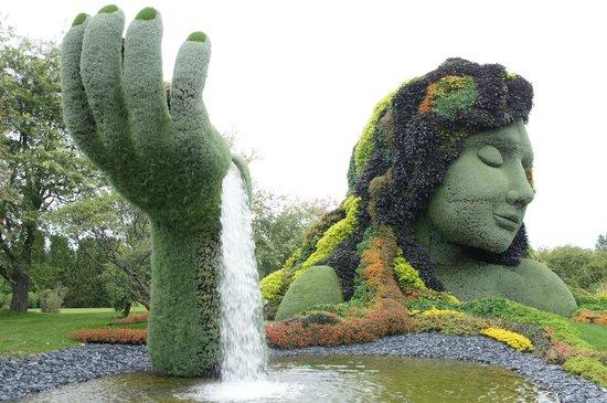 Montreal Botanical Gardens: Beautiful Living Sculpture