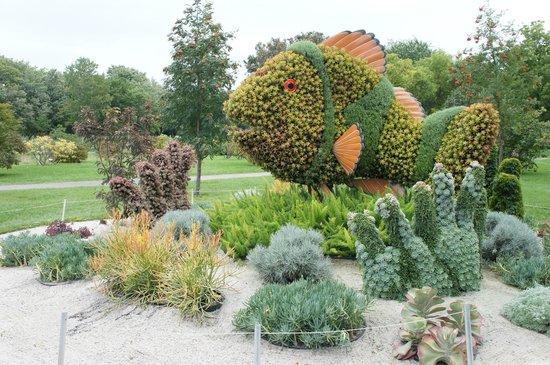 Montreal Botanical Gardens: Beautiful Living Sculpture   Fish