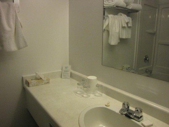 Prestige Hudson Bay Lodge : Bathroom