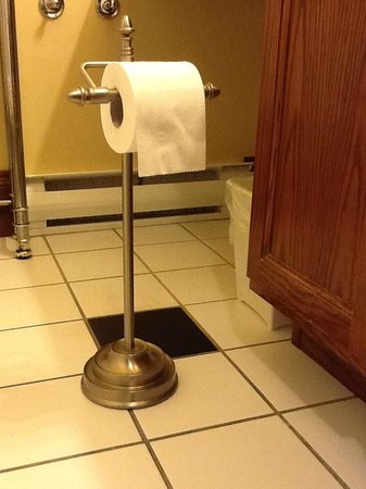 Spanish Bay Inn and  Suites: Toilet roll holder!
