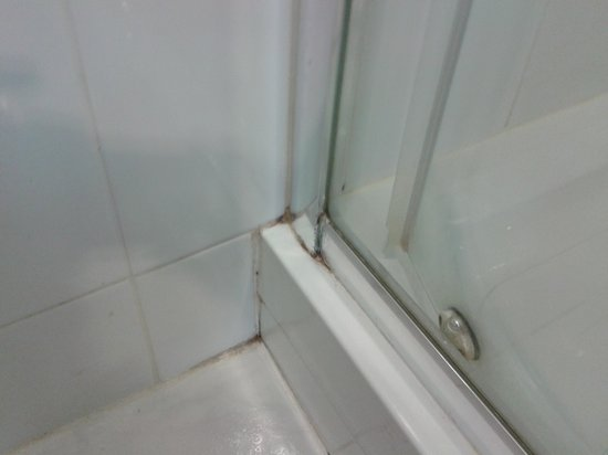 Russell Court Hotel: Dirty shower