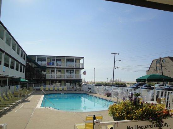 Coral Seas Oceanfront Motel: Pool
