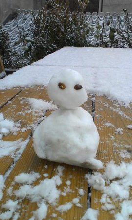 The Orchid Hotel : We made a snowman!