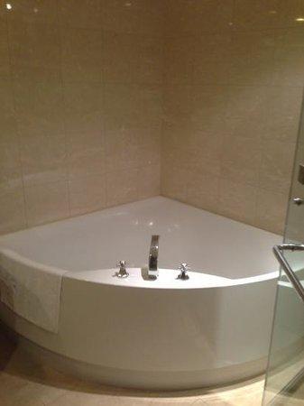 Hotel Kuva Chateau: tub