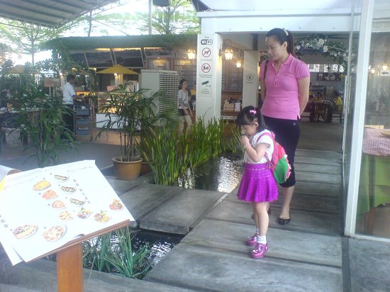 petaling jaya girls Free dating service and personals meet single girls in petaling jaya online today.