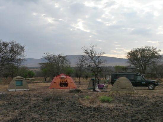 Duma Explorer - Day Tours: special campsite serengeti