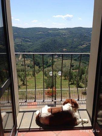 Agriturismo Il Giardino: Our morning view ... Paradise!