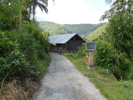 Karangsari Guest House : Hacia los campos de arroz. Antes de llegar al letrero hay que tomar el camino de la siguiente fo