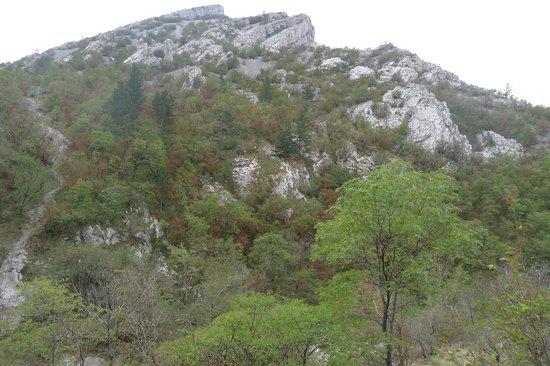 Val Rosandra Reserve: Горно-лесной пейзаж