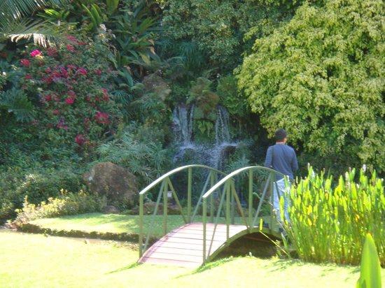 Tamambo Karen Blixen: Karen Blixen Bahçesi