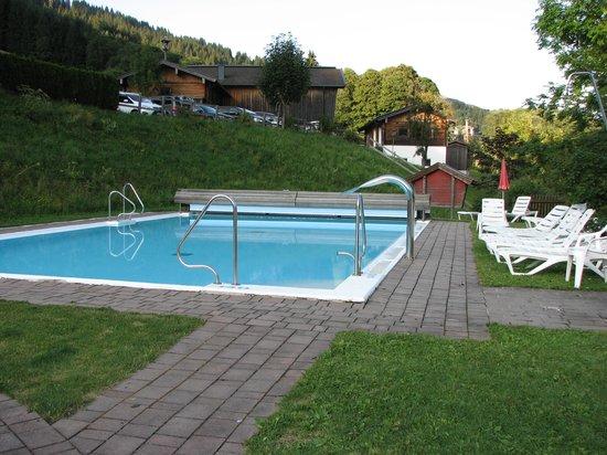 Lengauer Hof : Pool