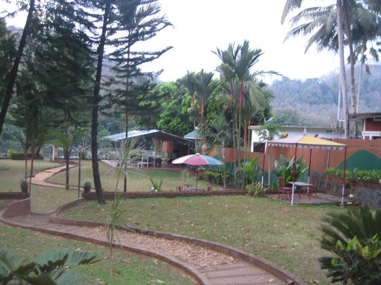 Riverok Villas: the hotel lawns