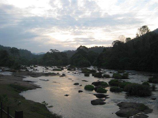 Riverok Villas: the chalakudy river