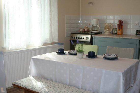 Bed and Breakfast Godollo : Kitchen