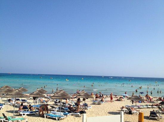 Electra Holiday Village : Nissi Beach