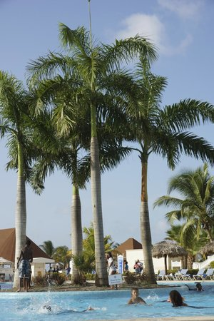 Grand Bahia Principe Jamaica: Palm trees at the pool