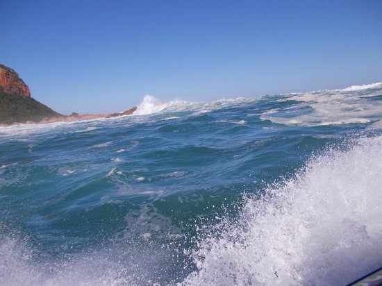 Knysna RIB Adventures: Riding the surf