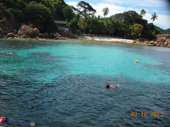Redang Pelangi Resort: Snorkeling activies