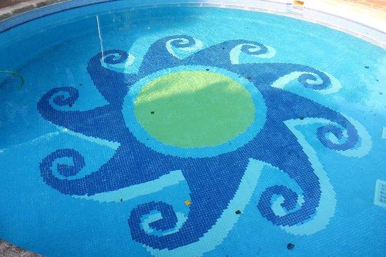 Molino del Alto Ebro: suciedad en la piscina
