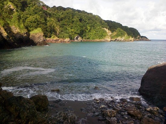 Sandaway Beach Holiday Park: Cove at the caravan site