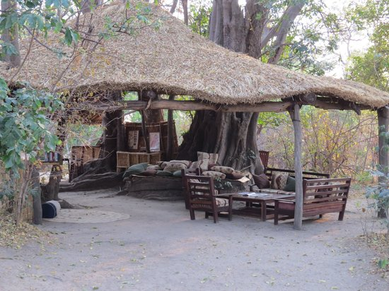 """Chikoko Trails Camps: The """"lounge"""" and bar"""