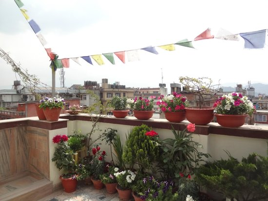 Asmita Bed & Breakfast: Terrace