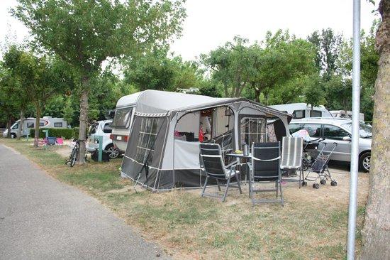 Camping Park delle Rose: Standardplads