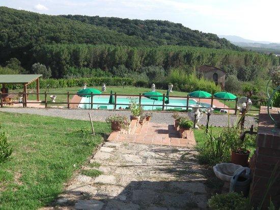 Podere Chiaromonte: piscina