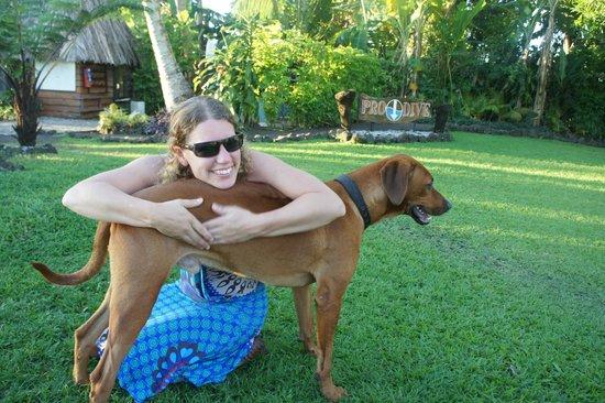 Paradise Taveuni: Knuffelen met Beethoven