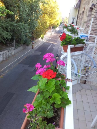 Budavar Bed & Breakfast : Le balcon de la chambre N°4