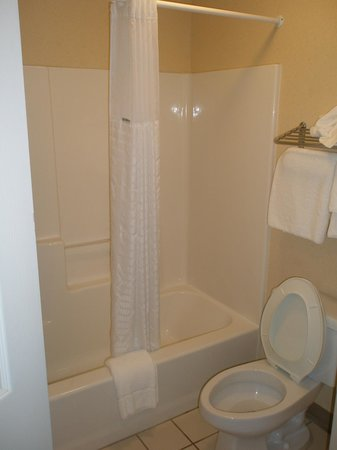 Baymont Inn & Suites Georgetown/Near Georgetown Marina : Bathroom