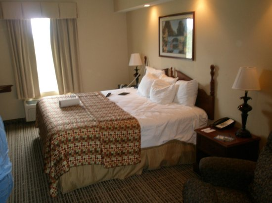Baymont Inn & Suites Georgetown/Near Georgetown Marina: King Size Bed
