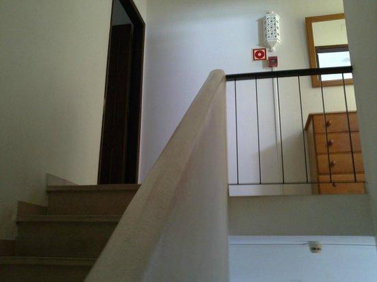 Rainha D Leonor Apartamentos: stairs