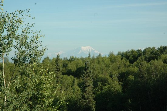 Talkeetna Denali View Lodge & Cabins: View of Mt Mckinley