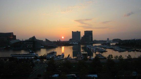 Royal Sonesta Harbor Court Baltimore : Out inner harbor view