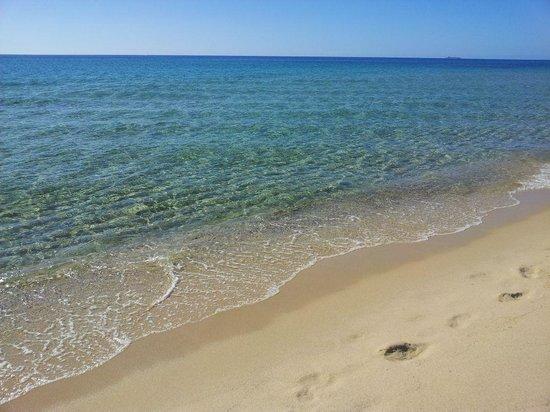 Villaggio Camping Le Dune : Il mare
