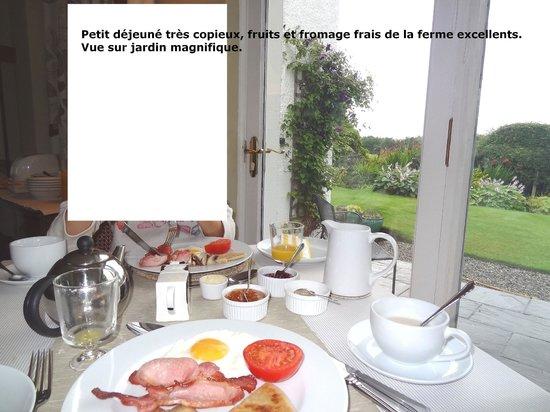 Auchenhowe Cottage: Copieux petit déjeuné avec des fruits & fromage  frais de la région. Délicieux !  !