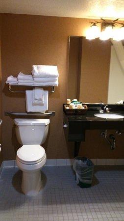 Bridge Vista Beach Hotel & Convention Center: Bathroom