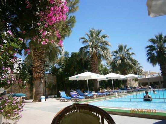 Anil Hotel: Pool