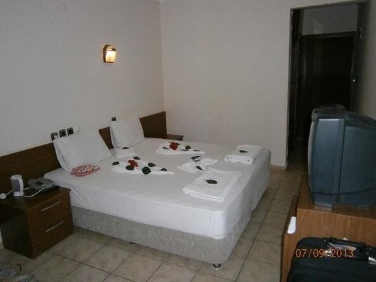 Anil Hotel: Our room