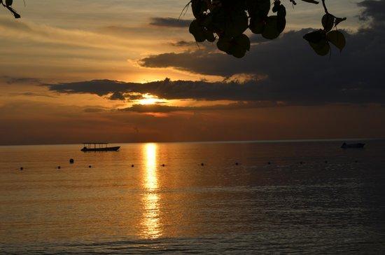 Sunset at the Palms: Coucher de soleil splendide