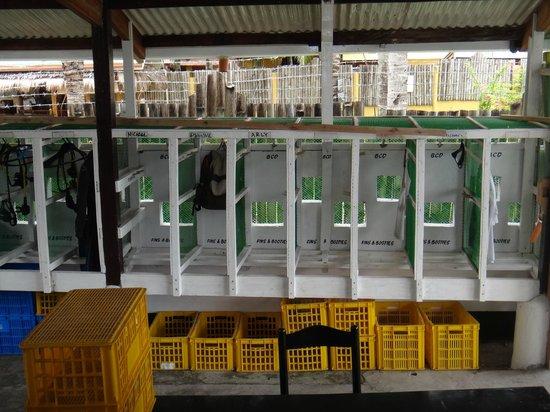 Divelink Cebu: Storage