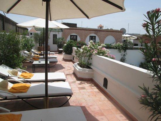 Riad Clémentine : terrasse et chambre 7