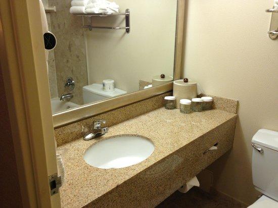 Holiday Inn Toronto International Airport: bathroom