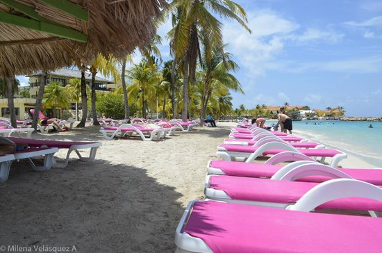 Mambo Beach : sillas para el sol